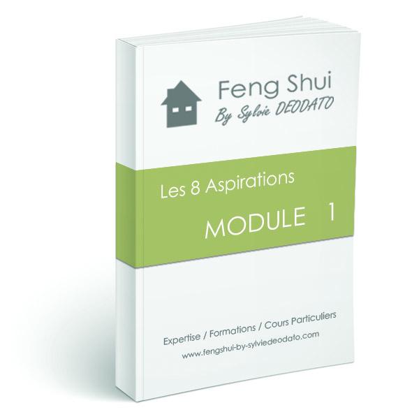 module 1 feng shui by sylvie deodato