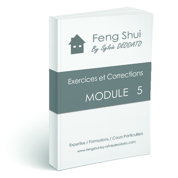 exercices et corrections - fend shui by sylvie deodato